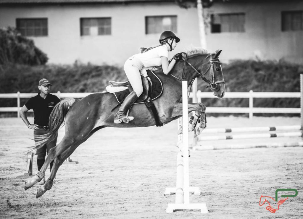 asi equitazione presso circolo ippico pegaso roma