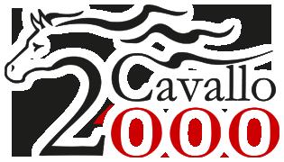 cavallo 2000 magazine